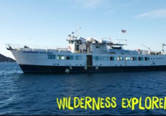 Wilderness-Explorer